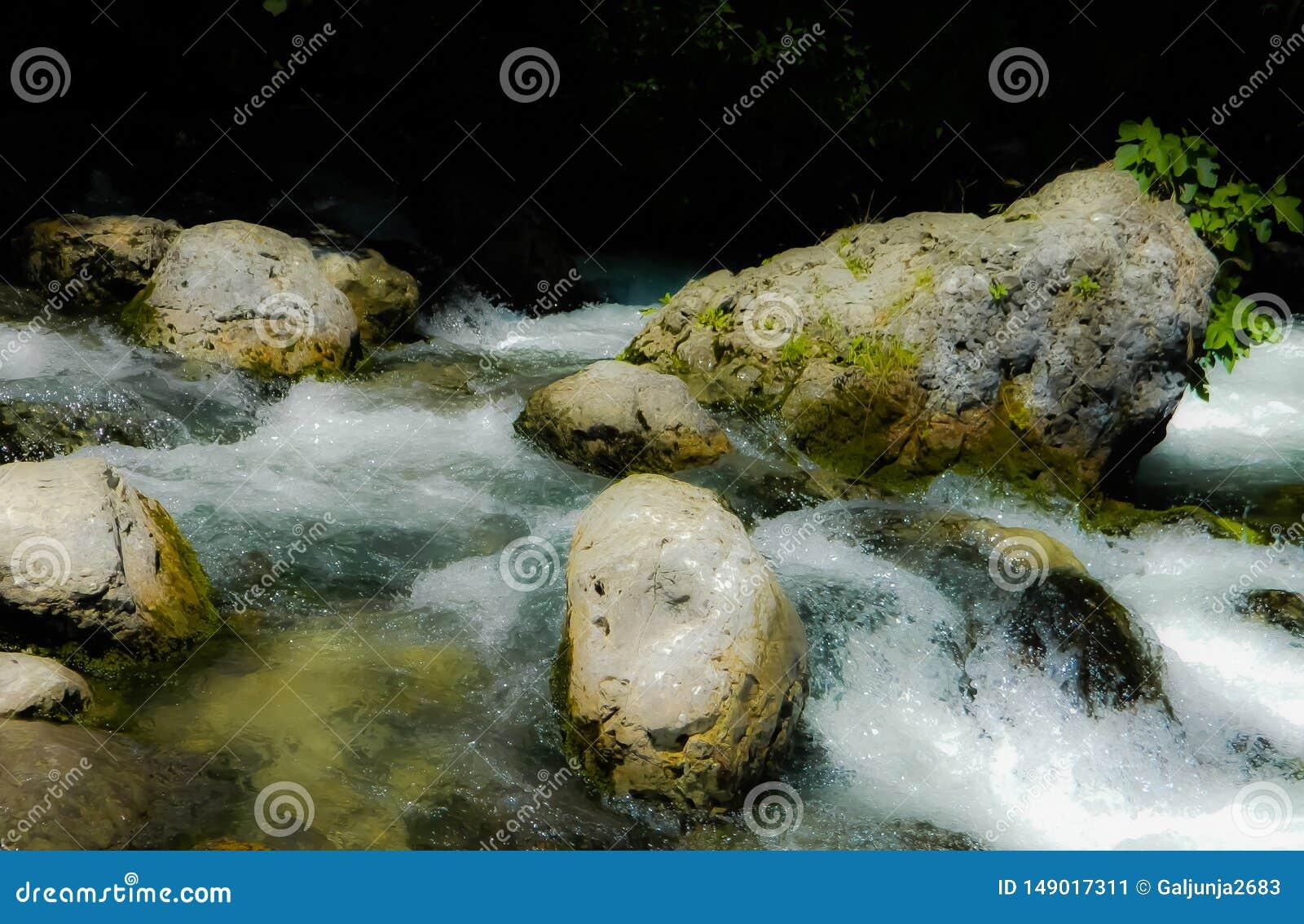 Flod vatten, stenar, skum, floding?ng, beh?llare