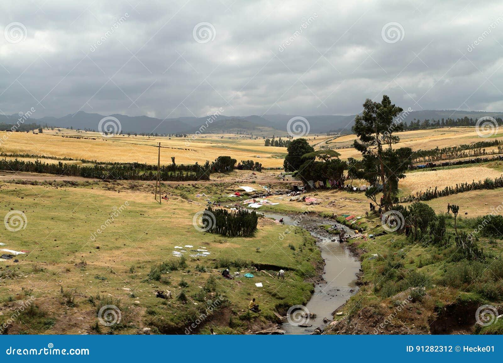 Flodlandskap och tvagningkvinnor i Etiopien