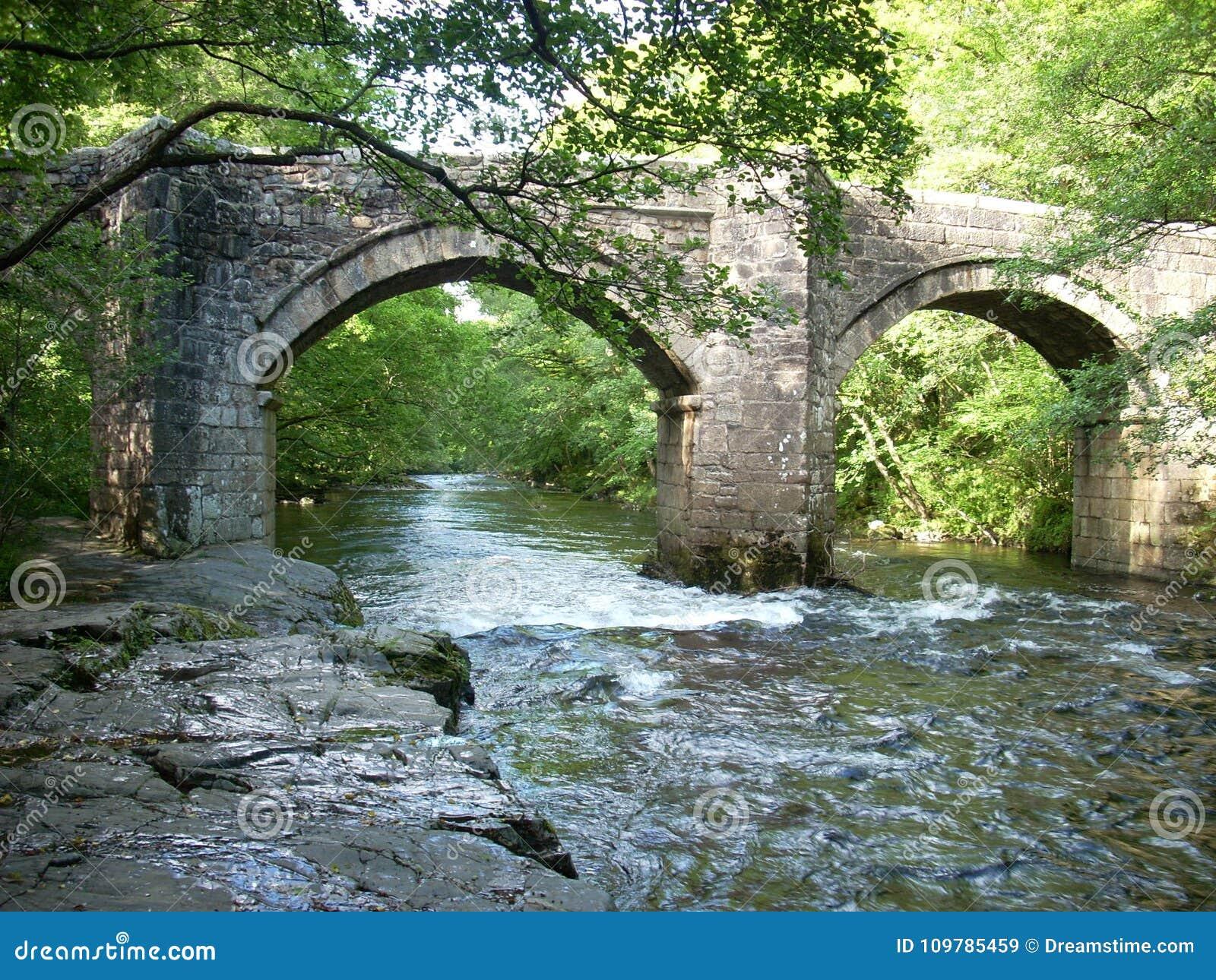 Flodpilen i Devon