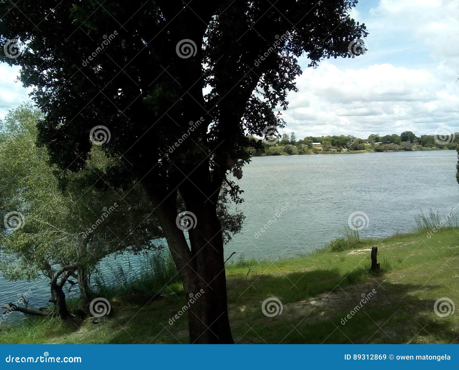 Flodstrand zambezi 1