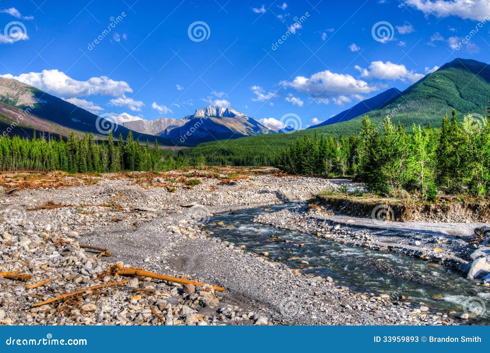 ... Damage on a mountain stream Kananaskis Country Alberta Canada, 2013