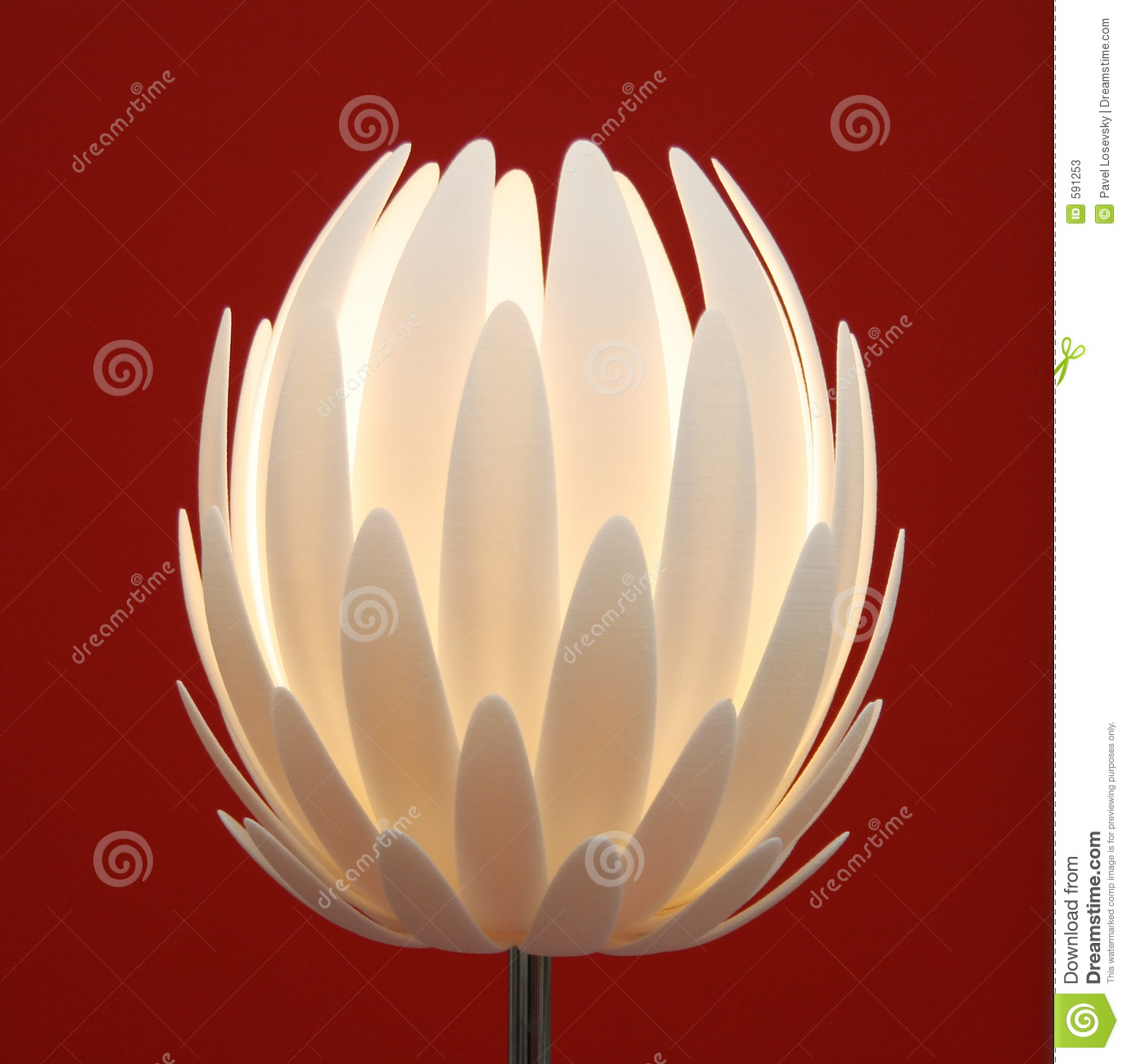 Floor Lamp Flower Stock Photos Image 591253
