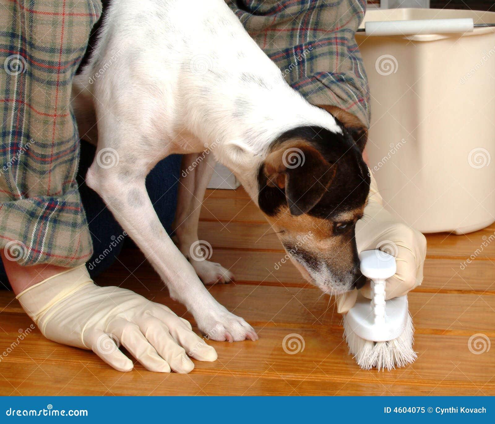 Floor Washer Helper