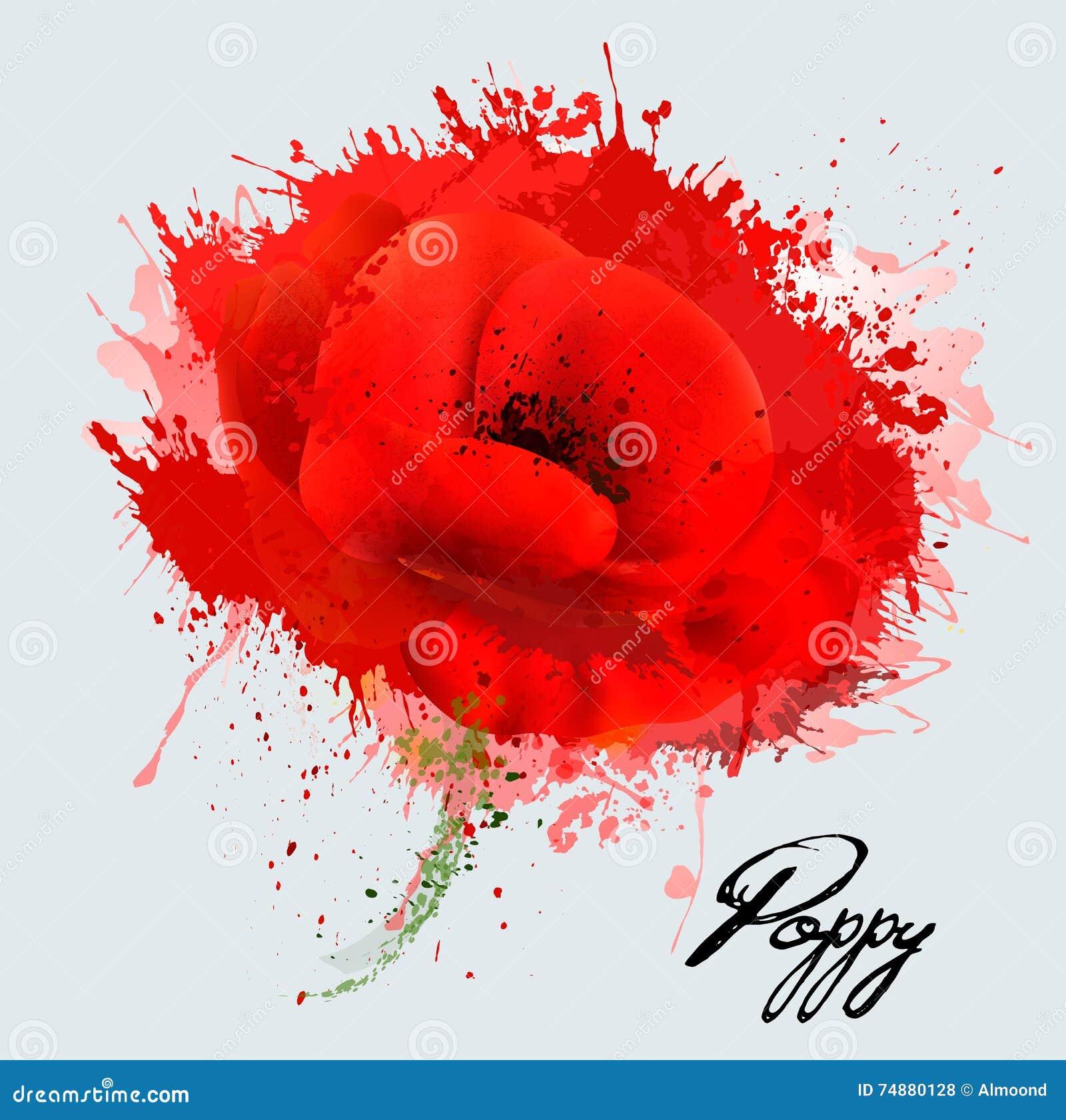 Flor abstrata da papoila da aquarela