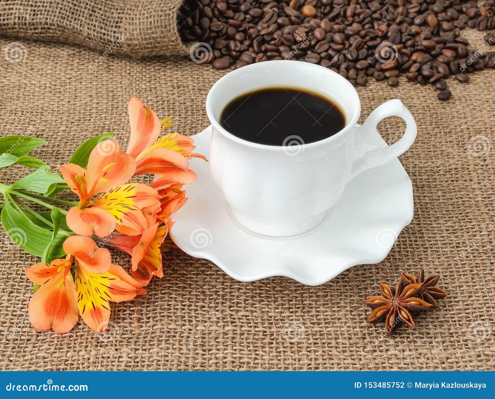 Flor alaranjada do lírio peruano, café quente no copo elegante branco com pires e dispersão de feijões de café no pano de saco rú