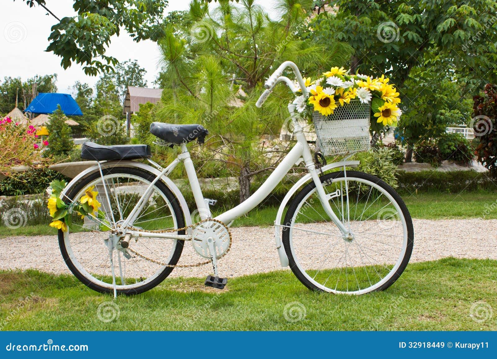 flor de jardim amarela:flor amarela em um branco velho decorativo pintou a bicicleta no