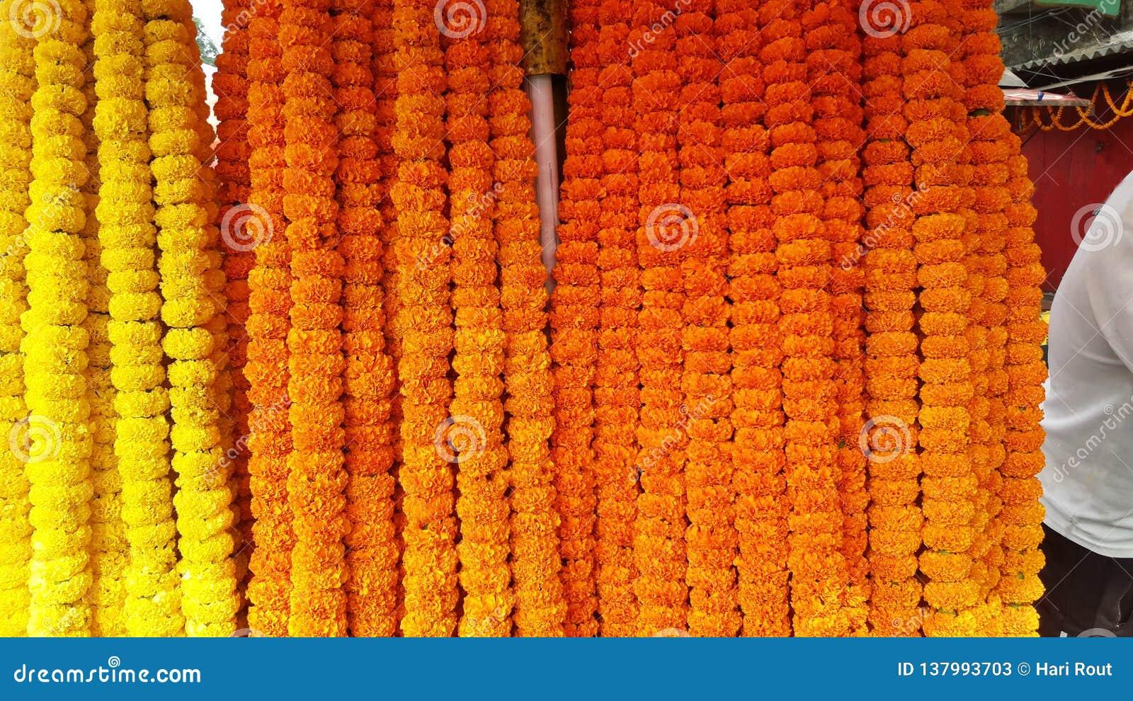 Flor amarilla marcada con etiqueta de la maravilla para que dios adore