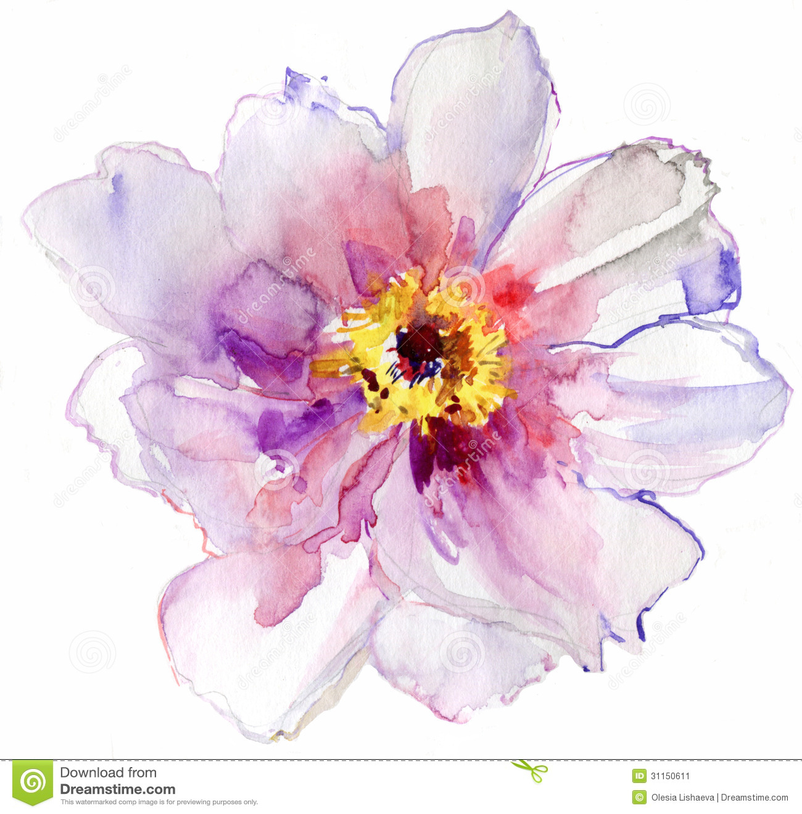 Flor blanca de la acuarela