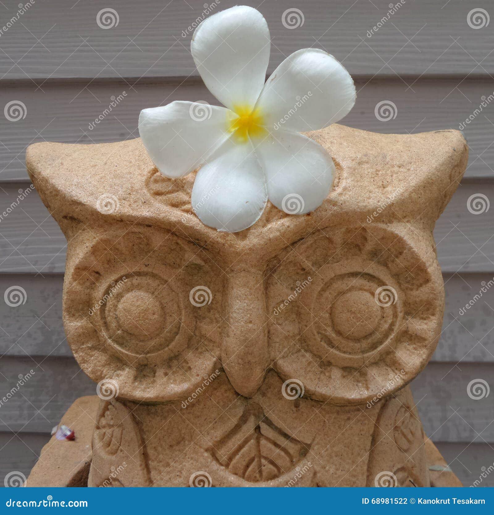 Flor blanca en escultura del búho de la piedra de la arena