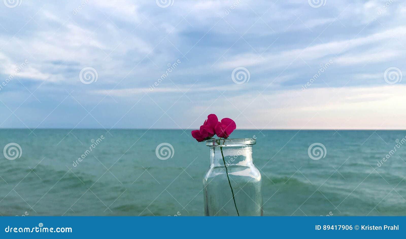 Flor cor-de-rosa minúscula na garrafa pelo lago