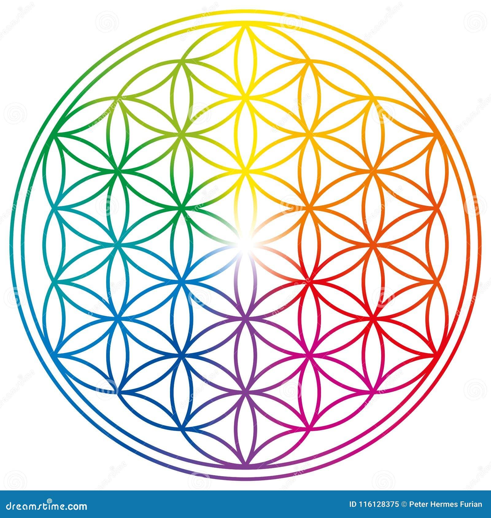 Flor da vida em cores do arco-íris