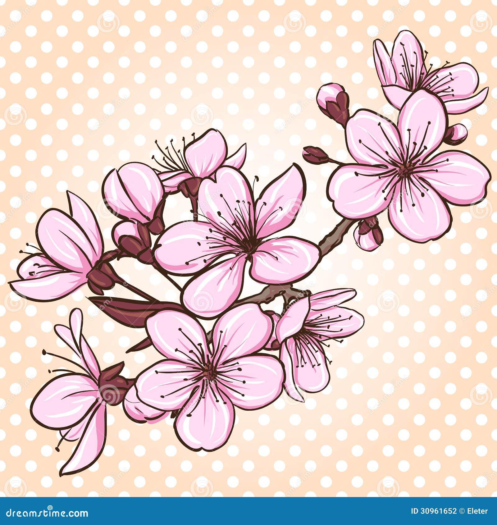 Flor De Durazno Japones Dibujo