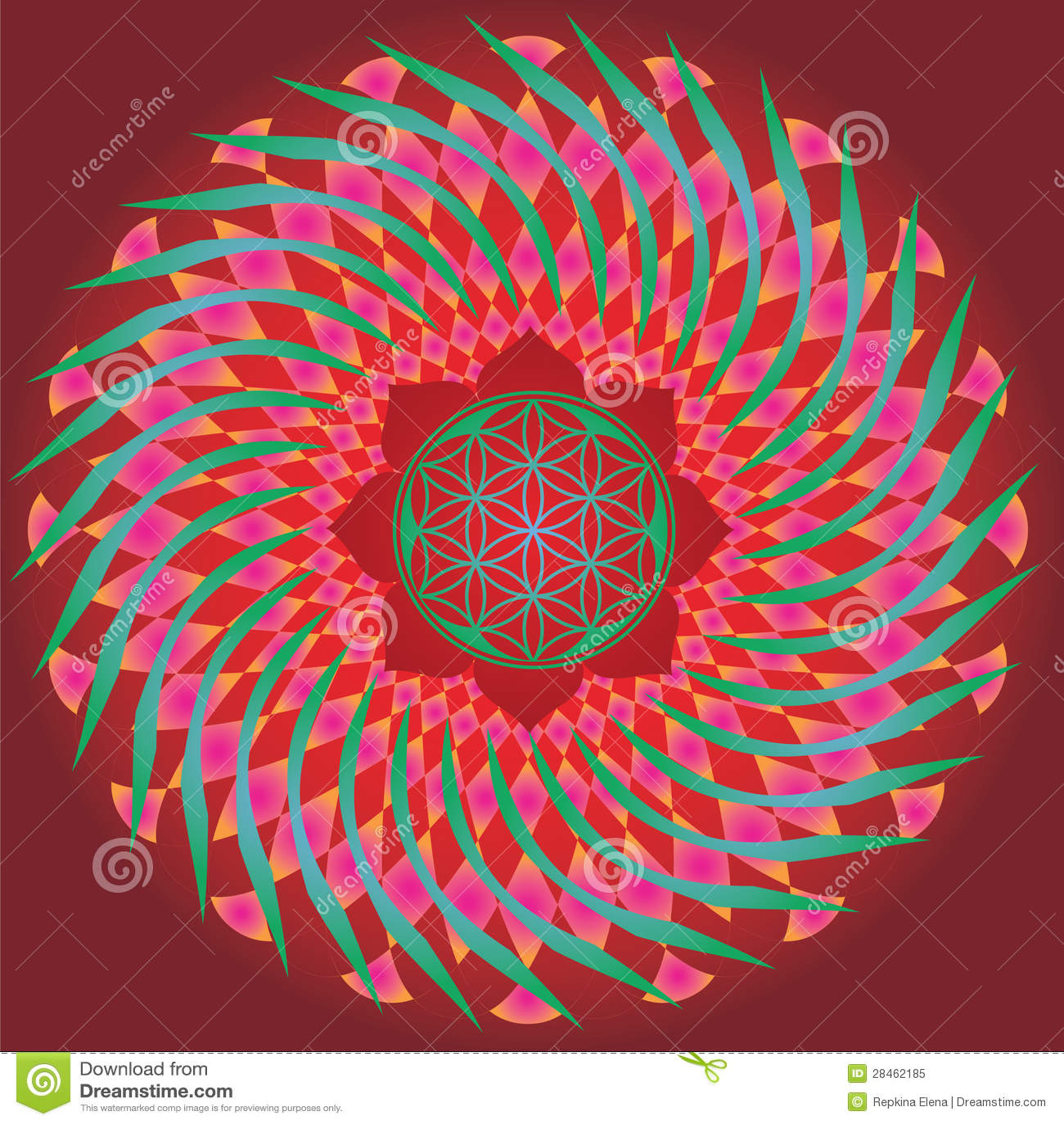 Flor De La Edición De La Primavera Del Germen De La Vida Mandala