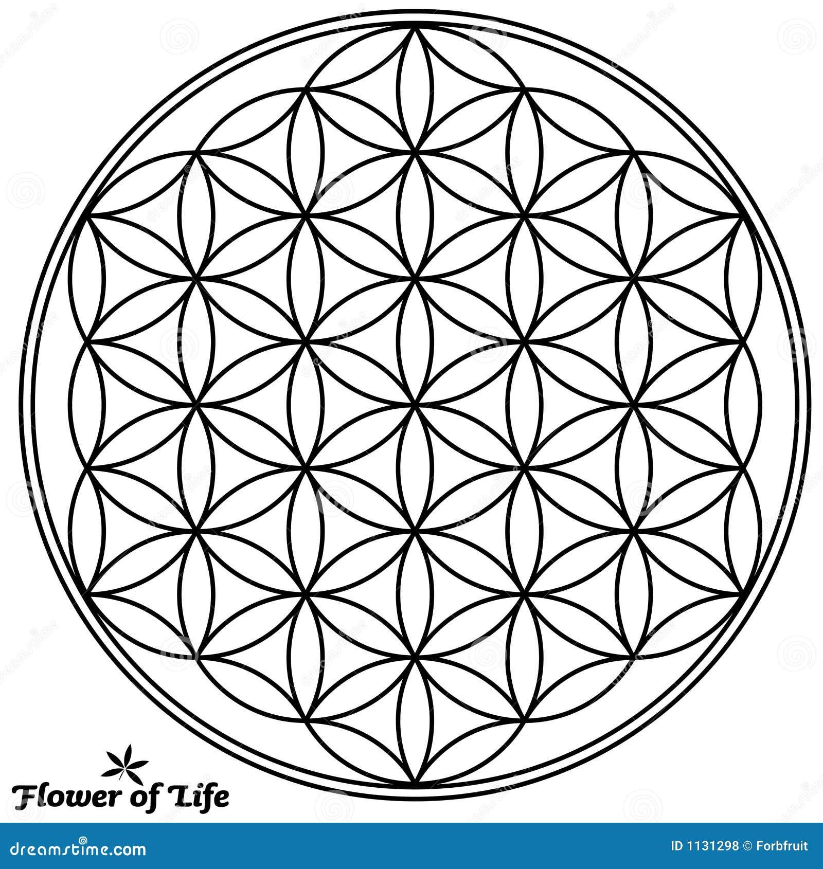 Flor De La Vida Ilustración Del Vector Ilustración De Símbolo 1131298