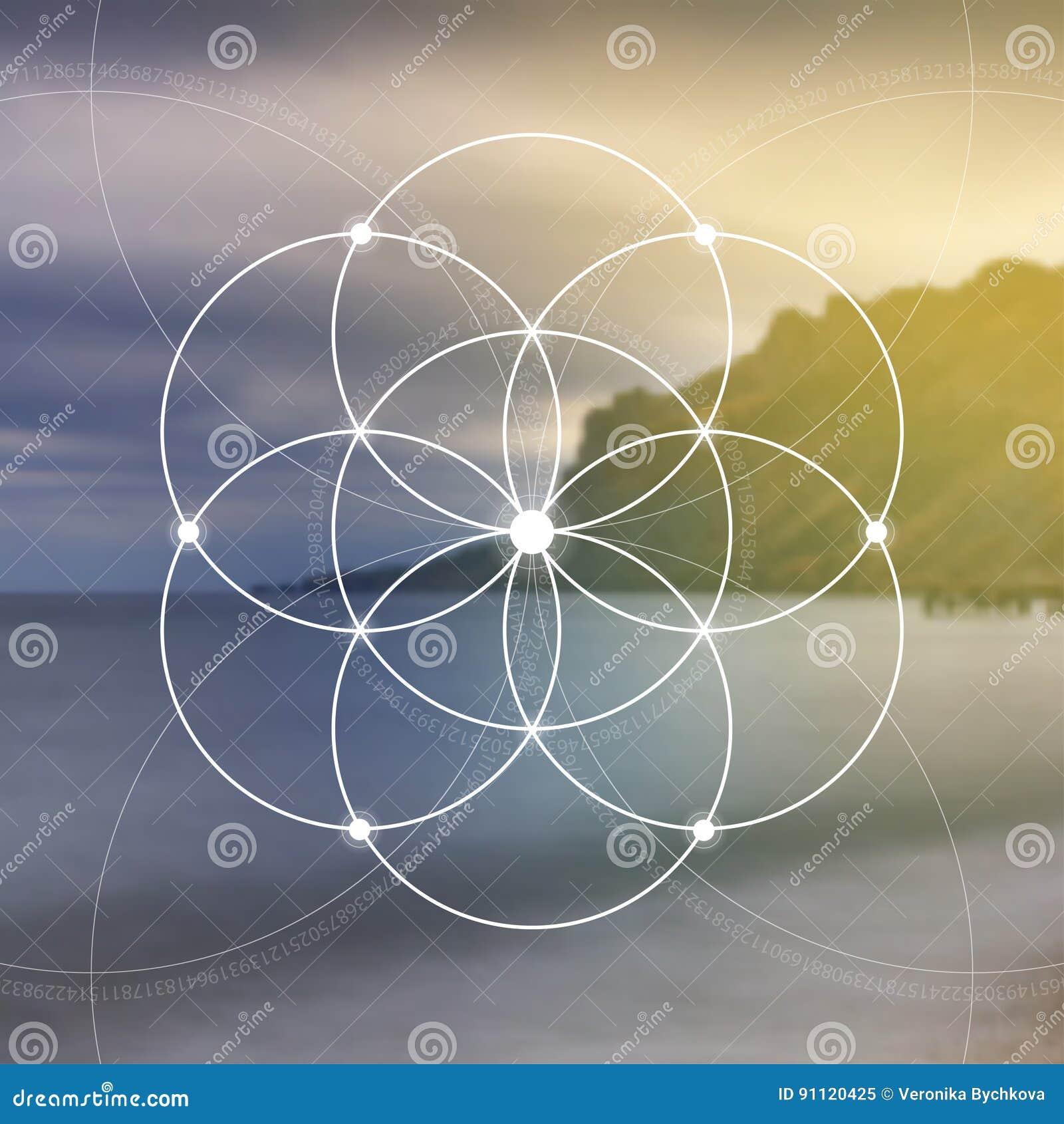 Flor de la vida - el entrelazar circunda símbolo antiguo Geometría sagrada Matemáticas, naturaleza, y espiritualidad en naturalez