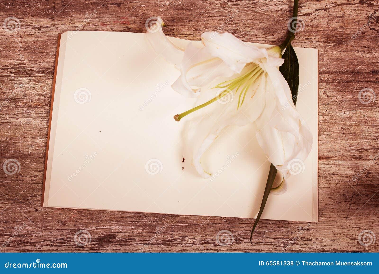 Flor de Lilly no livro de nota