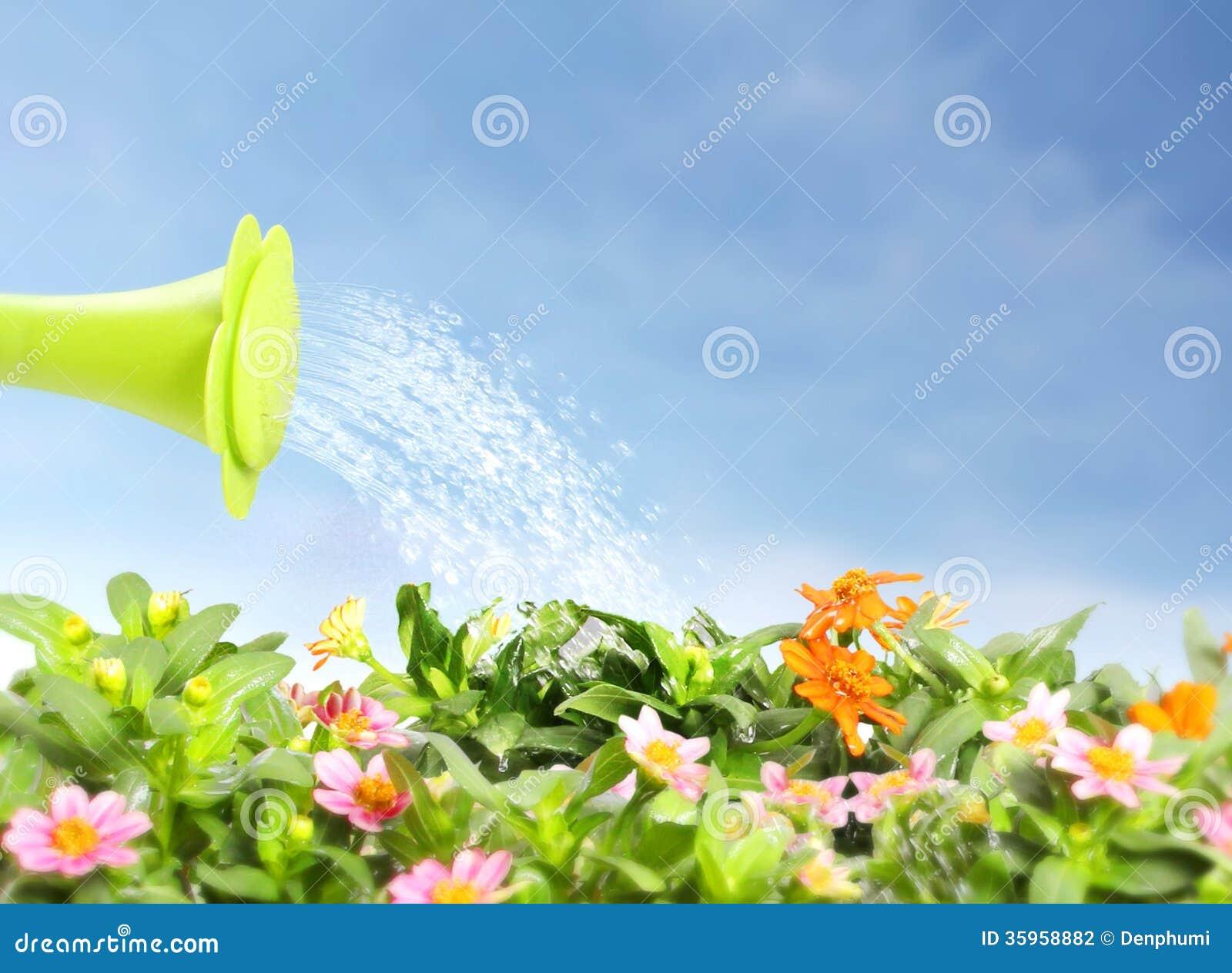 Flor de riego de colada del agua
