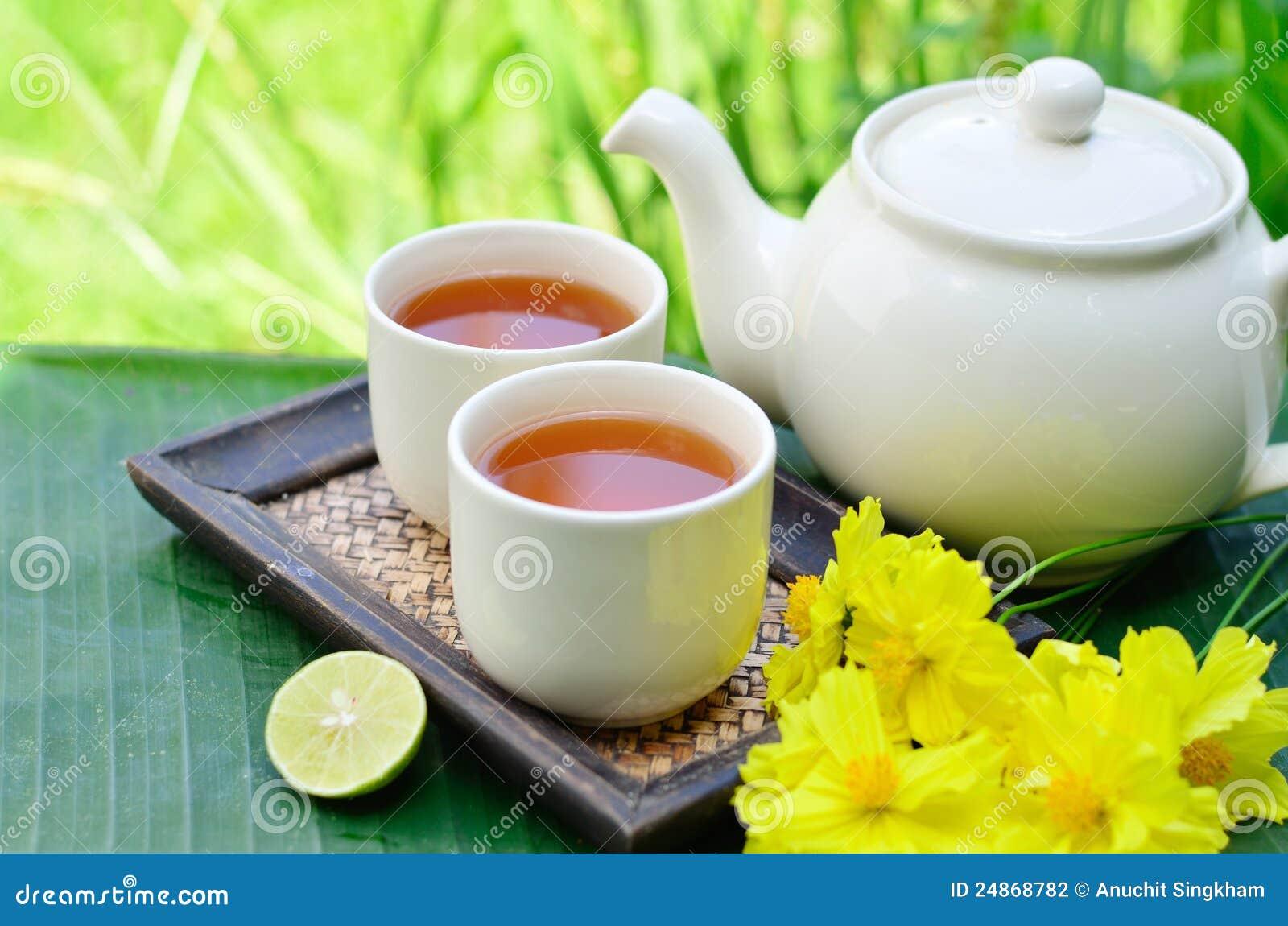 Flor del amarillo de la pizca del té