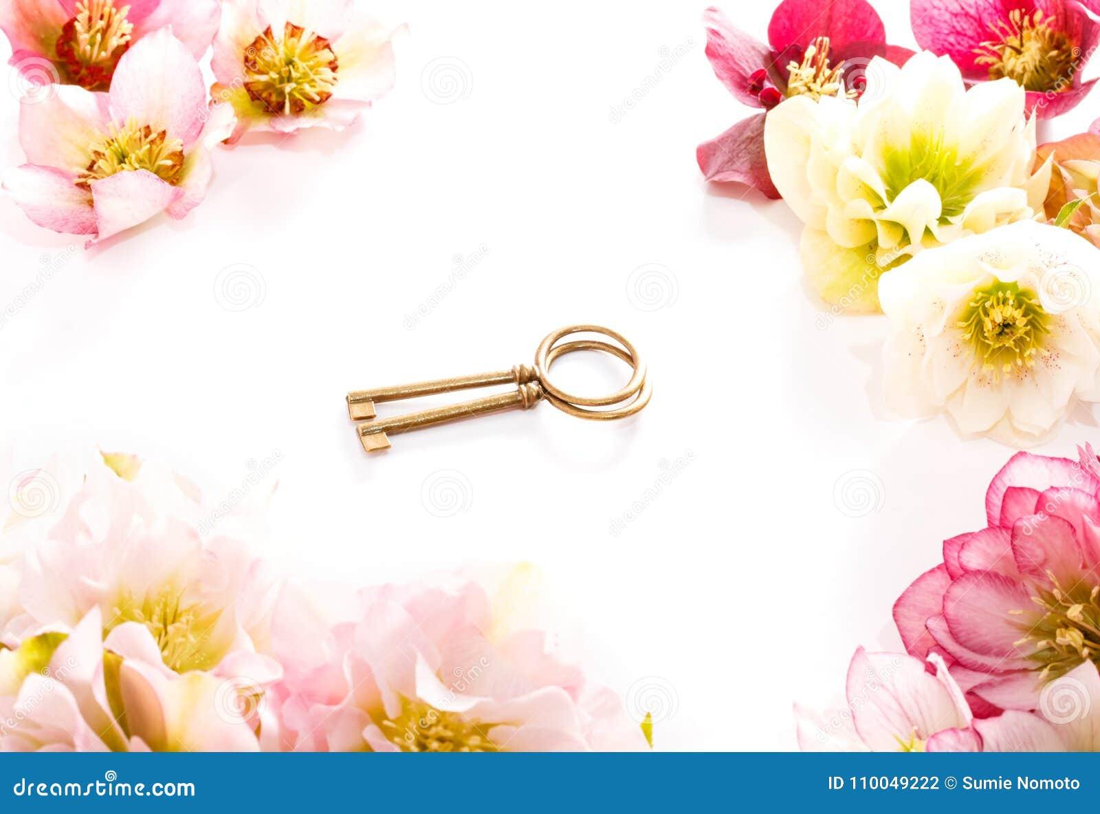 Flor del Hellebore u orientalis del Helleborus y llave antiqued aislados en blanco