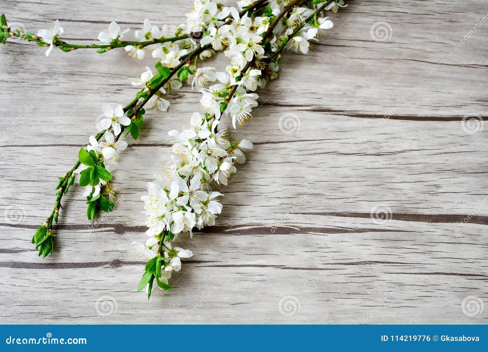 Flor del resorte
