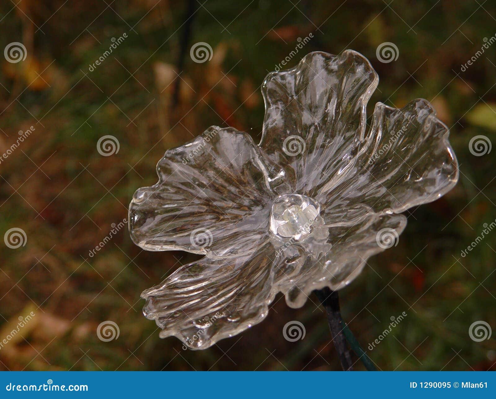 Flor del vidrio