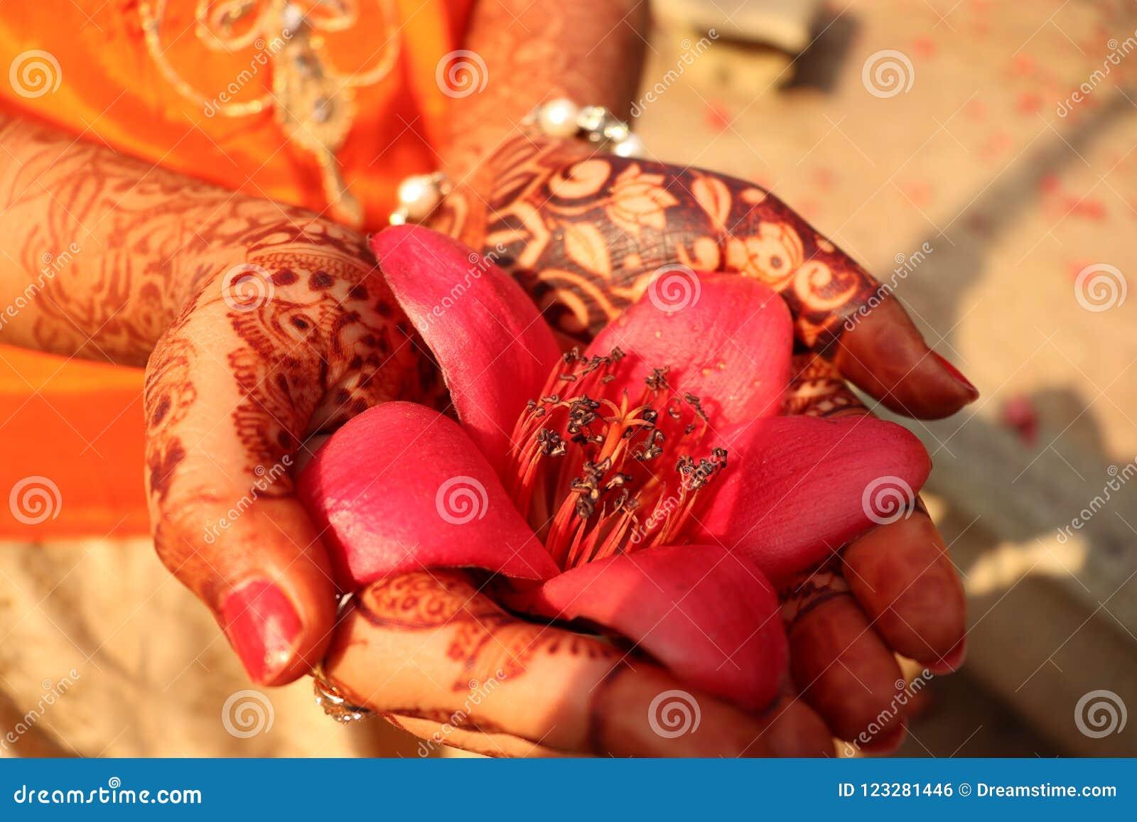 Flor hermosa en manos delicadas