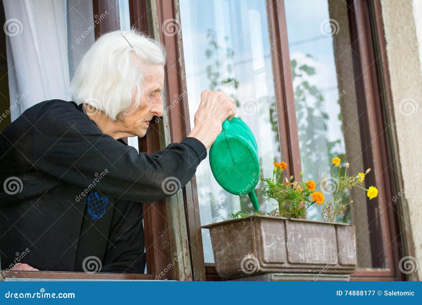 Flor molhando da mulher superior na janela da casa