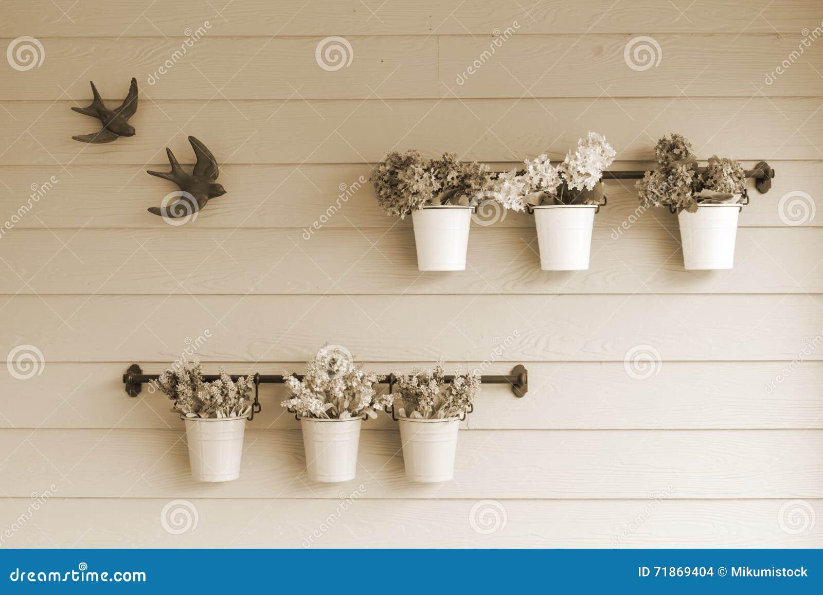 Flor pequena do potenciômetro a bordo da parede de madeira