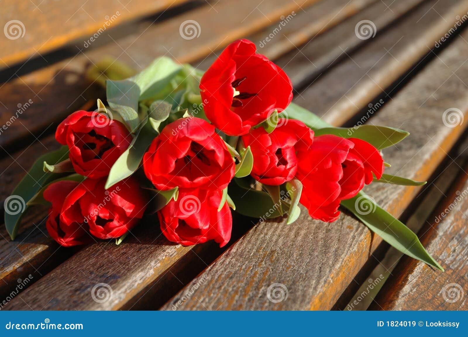Flor roja para el amante