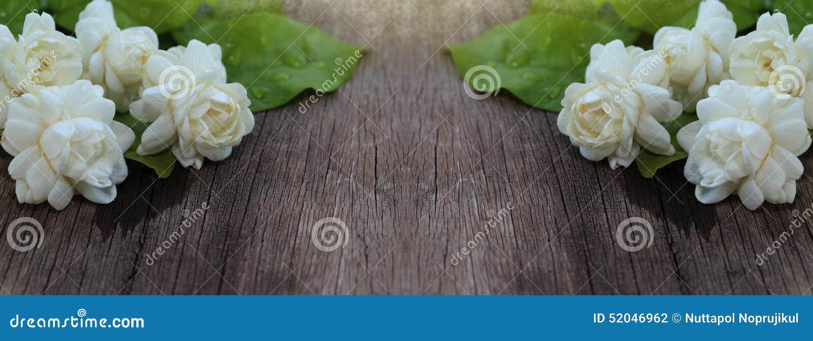 Flor tropical del jazmín en la madera Flores y hojas del jazmín en el Br