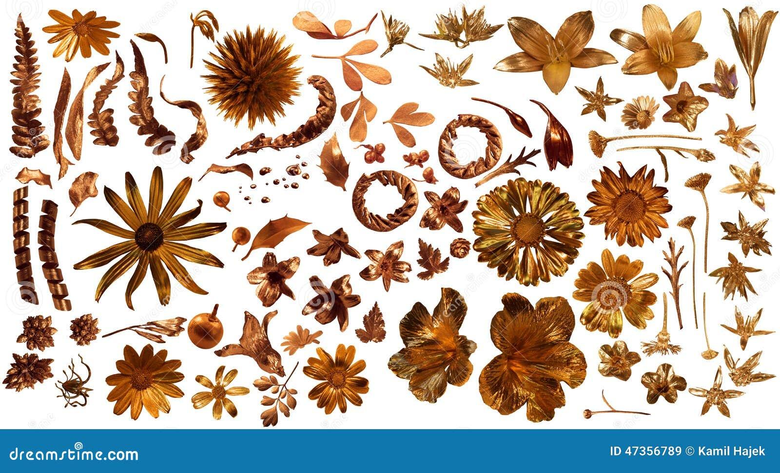 Flora Parts real dourada