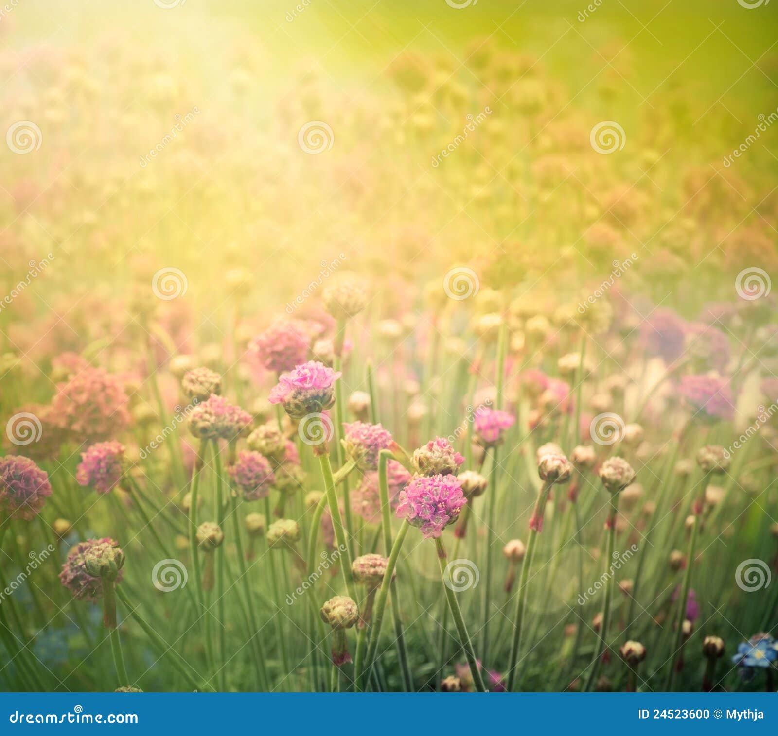 Floral άνοιξη ανασκόπησης