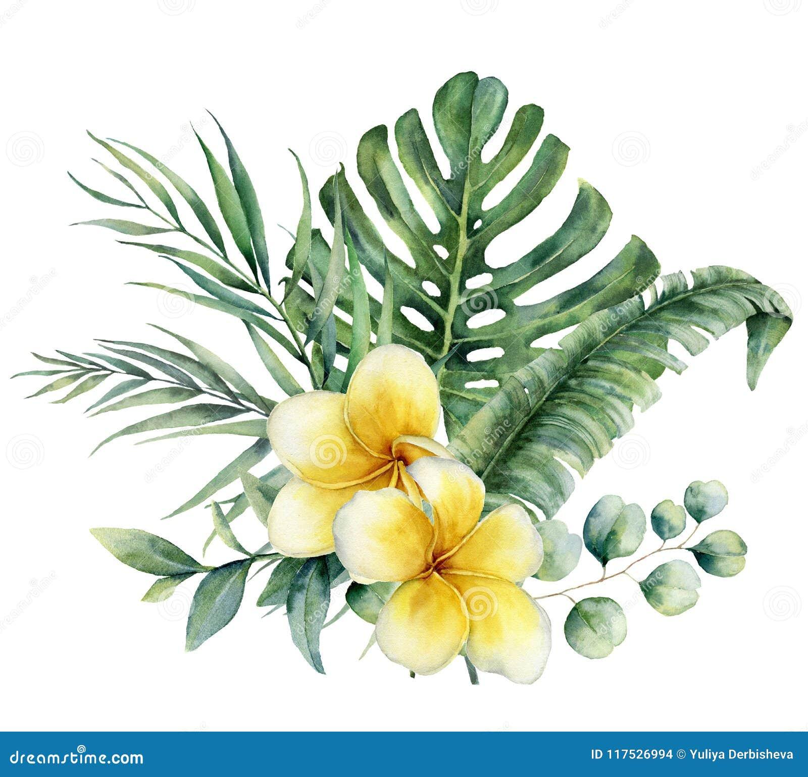 Floral τροπική ανθοδέσμη Watercolor με το plumeria και τον ασημένιο ευκάλυπτο δολαρίων Χρωματισμένο χέρι monstera, κλάδος παλαμών