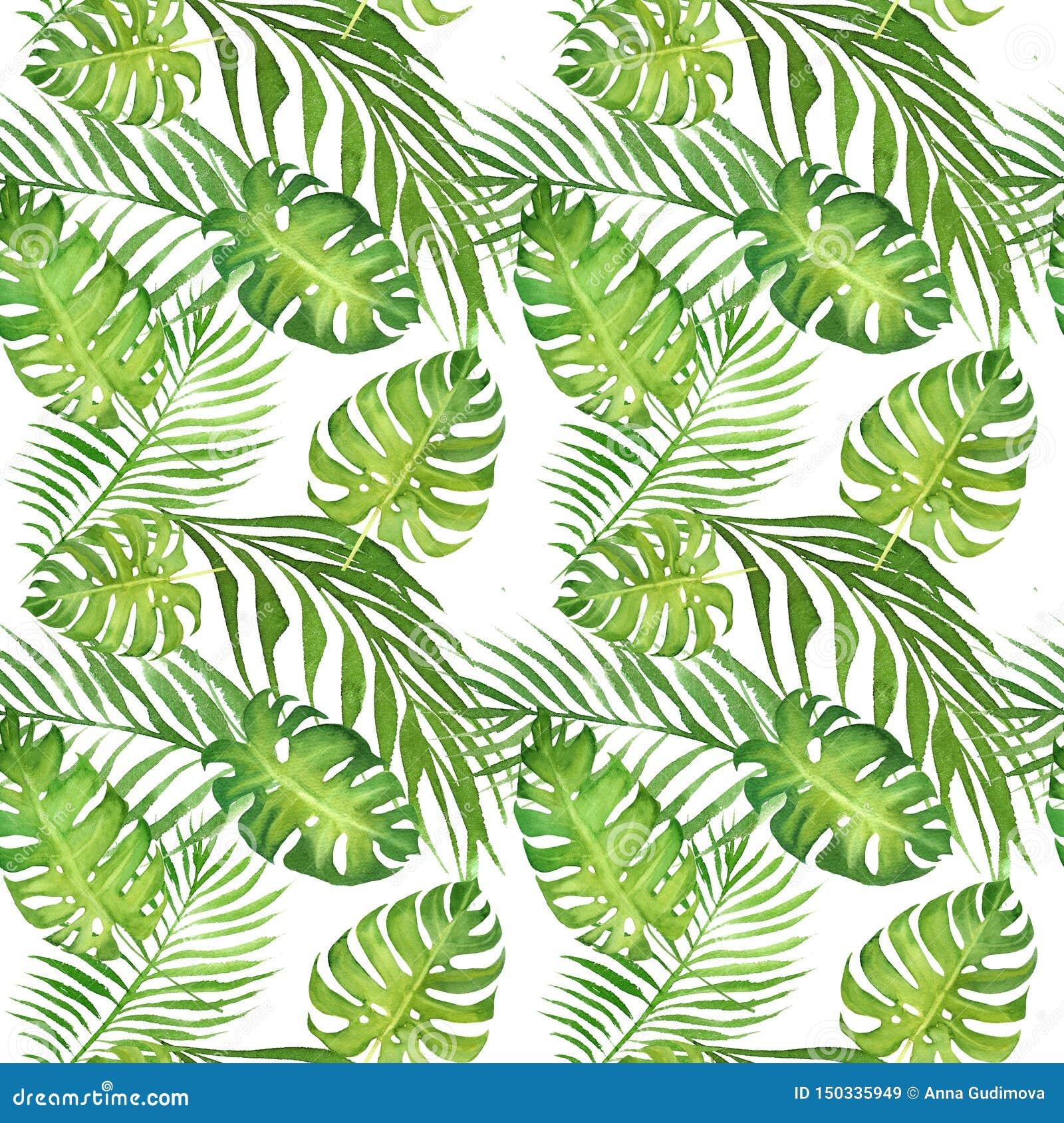 Floral τροπικό άνευ ραφής σχέδιο Watercolor με τα πράσινα φύλλα monstera και τα φύλλα φοινίκων στο λευκό