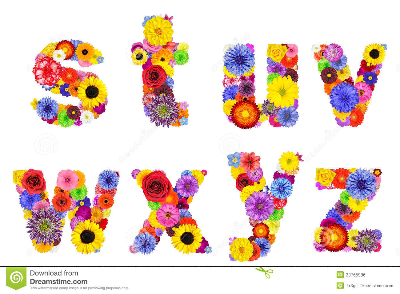 Floral alphabet isolated on white letters s t u v w x y z royalty free stock image - Lettre alphabet original ...
