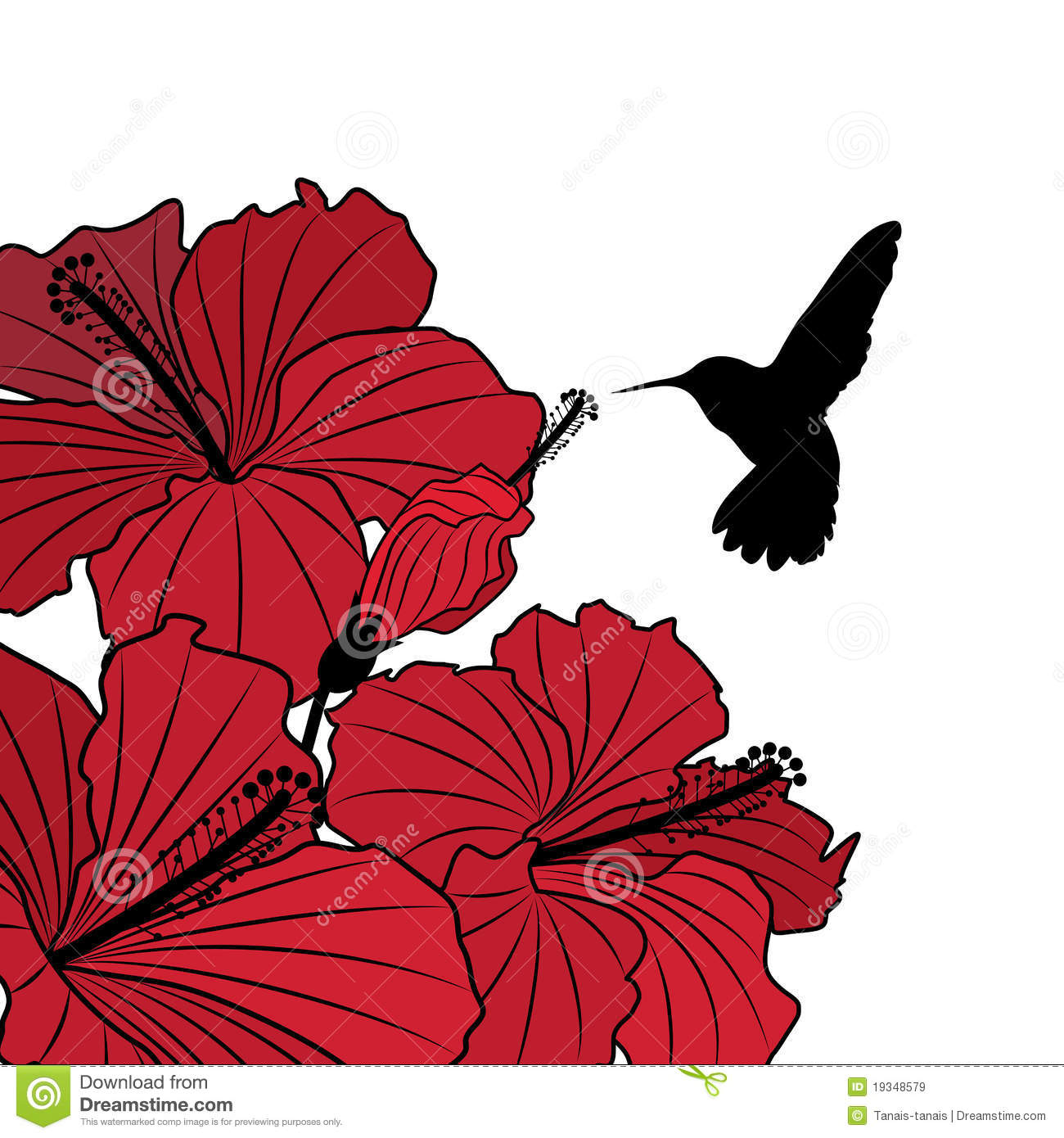 Floral background with hibiscus and hummingbird stock vector floral background with hibiscus and hummingbird izmirmasajfo Image collections