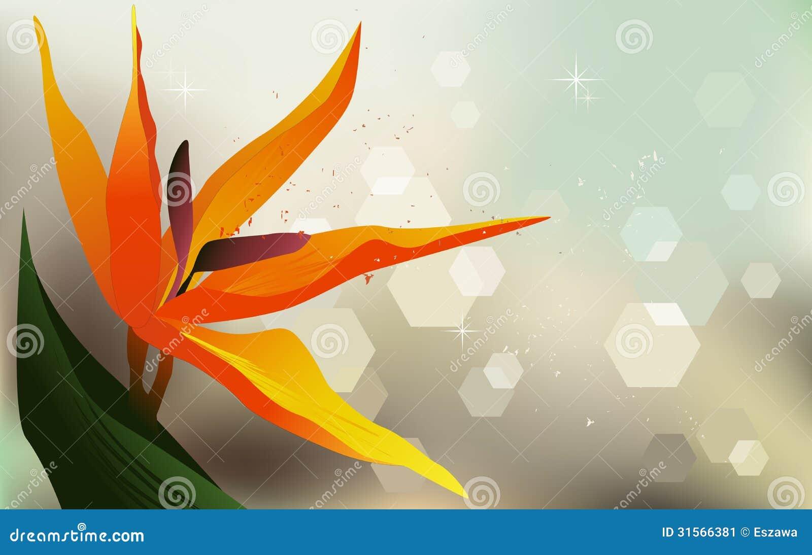 Floral Background Strelitzia Desktop Wallpaper Stock Vector