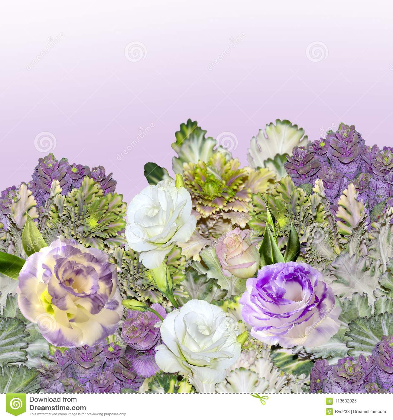 Bouquet Of Eustoma Lisianthus Flowers And Ornamental Cabbage Stock