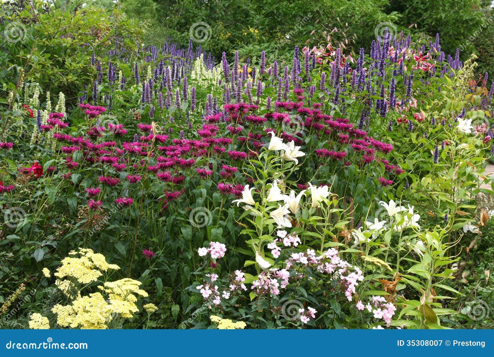 Floral Border In An English Garden Royalty Free Stock