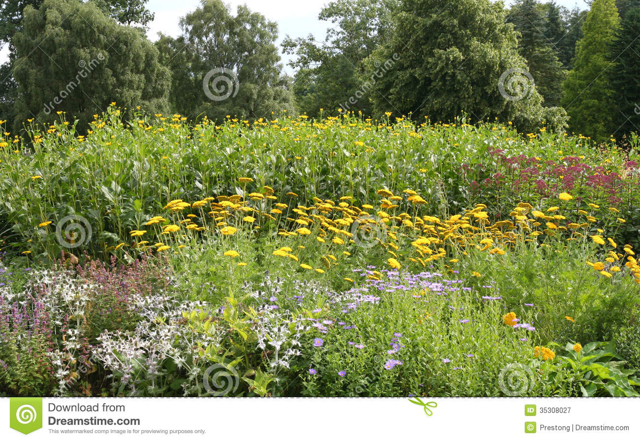 Floral Border In An English Garden Stock Image Image
