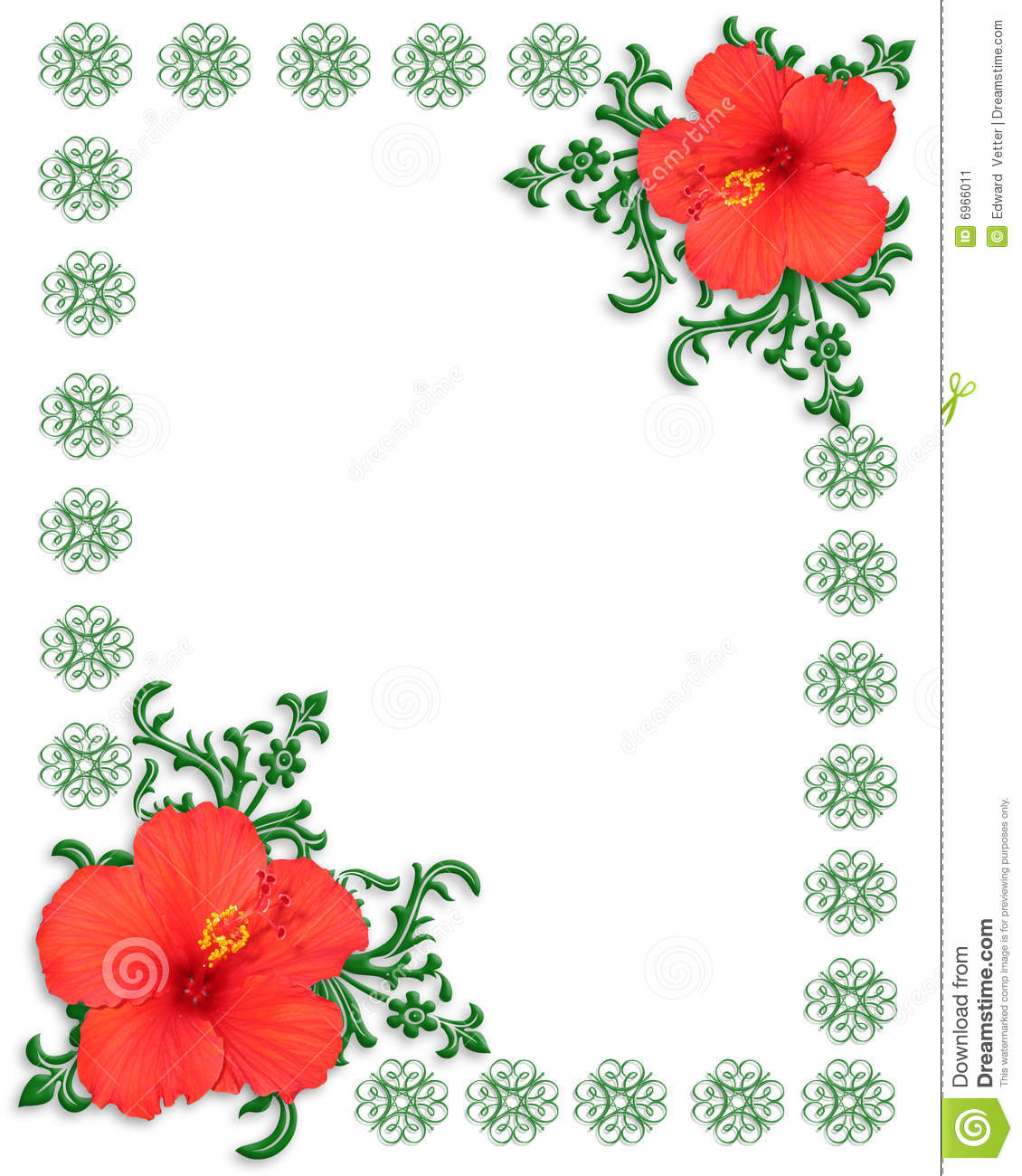 Floral Border Template Hibiscus Stock Image Image 6966011