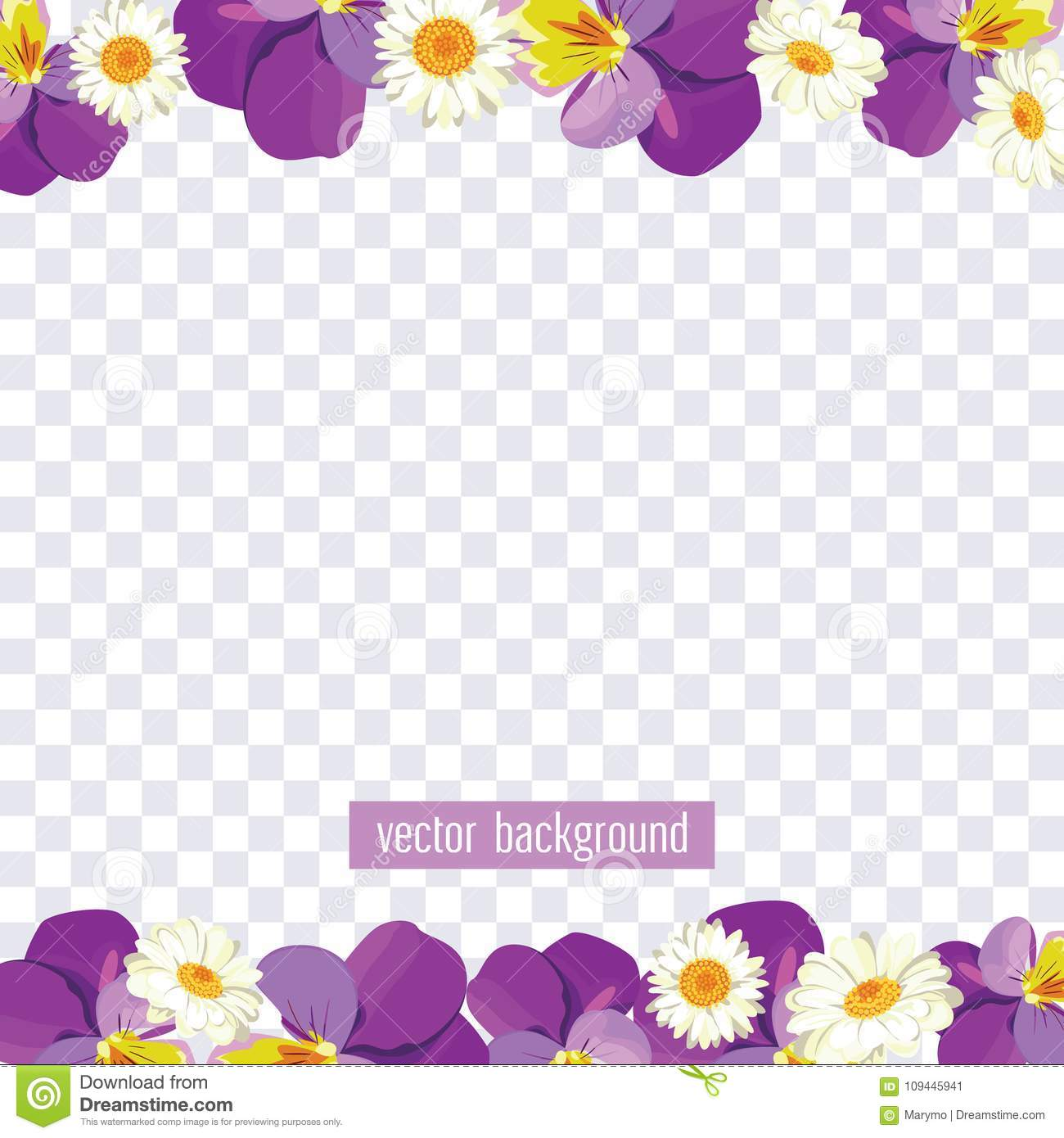floral borders on transparent background vector illustration stock