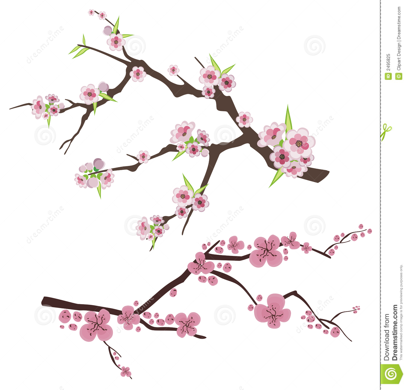 Lilac Flower Meaning Floral Branch Series Royalty Free Stock Photo Image 2495825