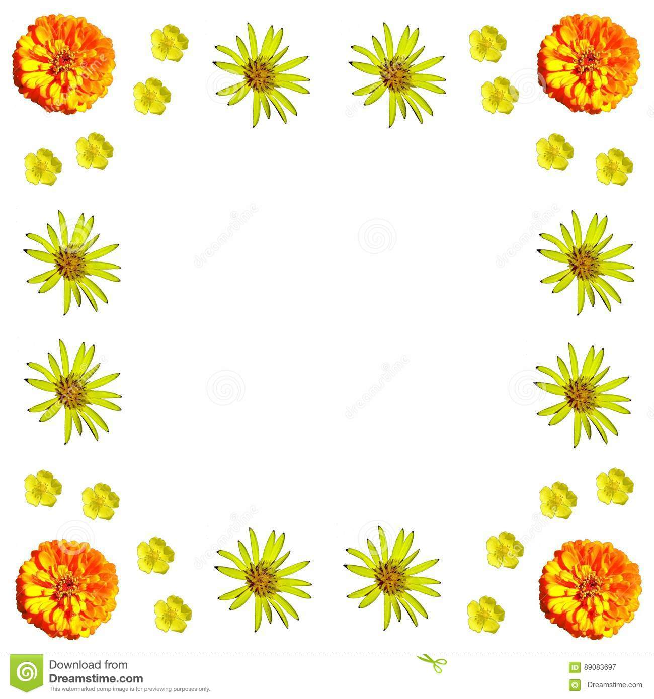 Floral Colorful Pattern Background Set Stock Image