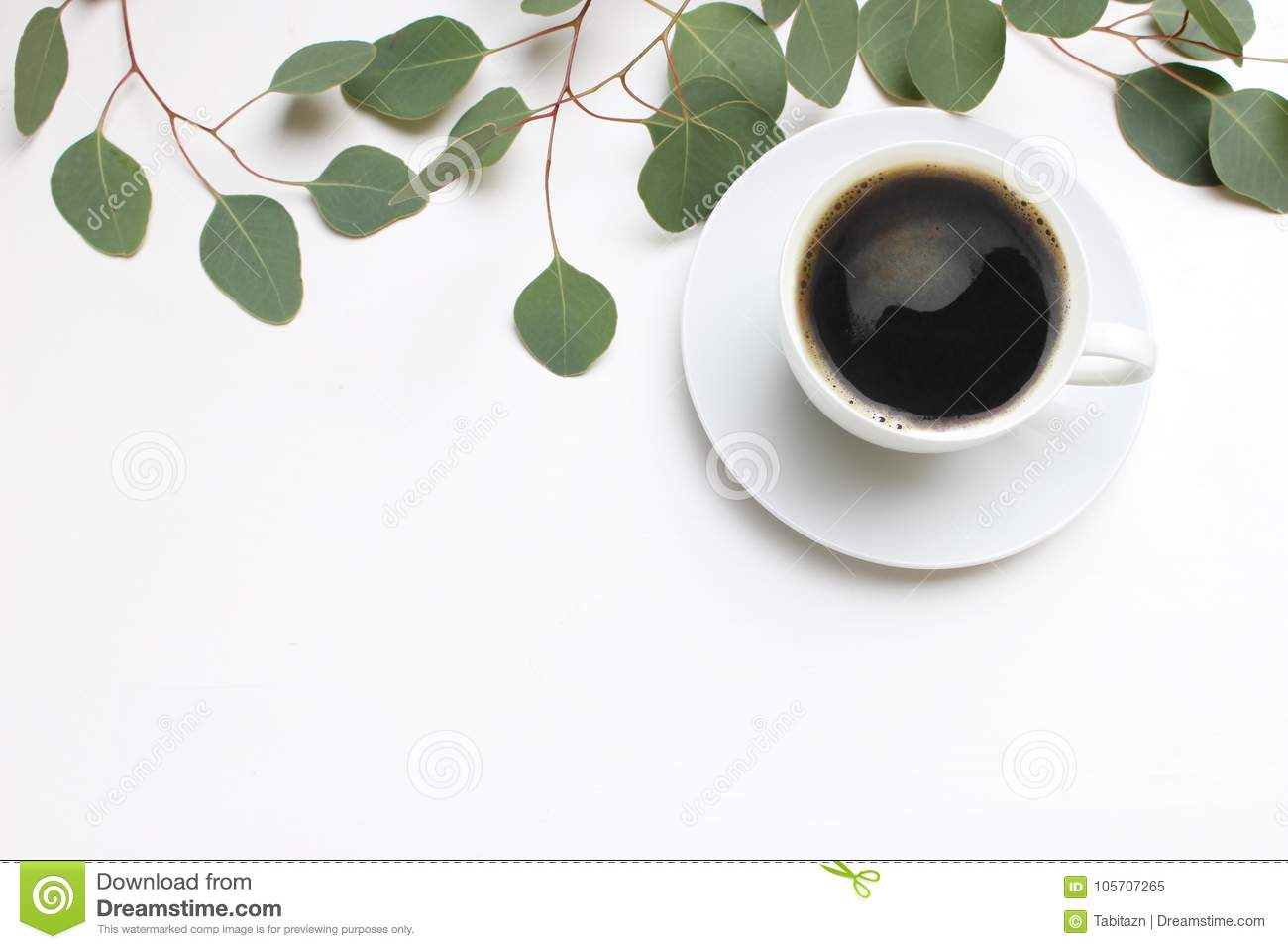 Floral composition made of green eucalyptus leaves and branches on white wooden background with cup of coffee. Feminine