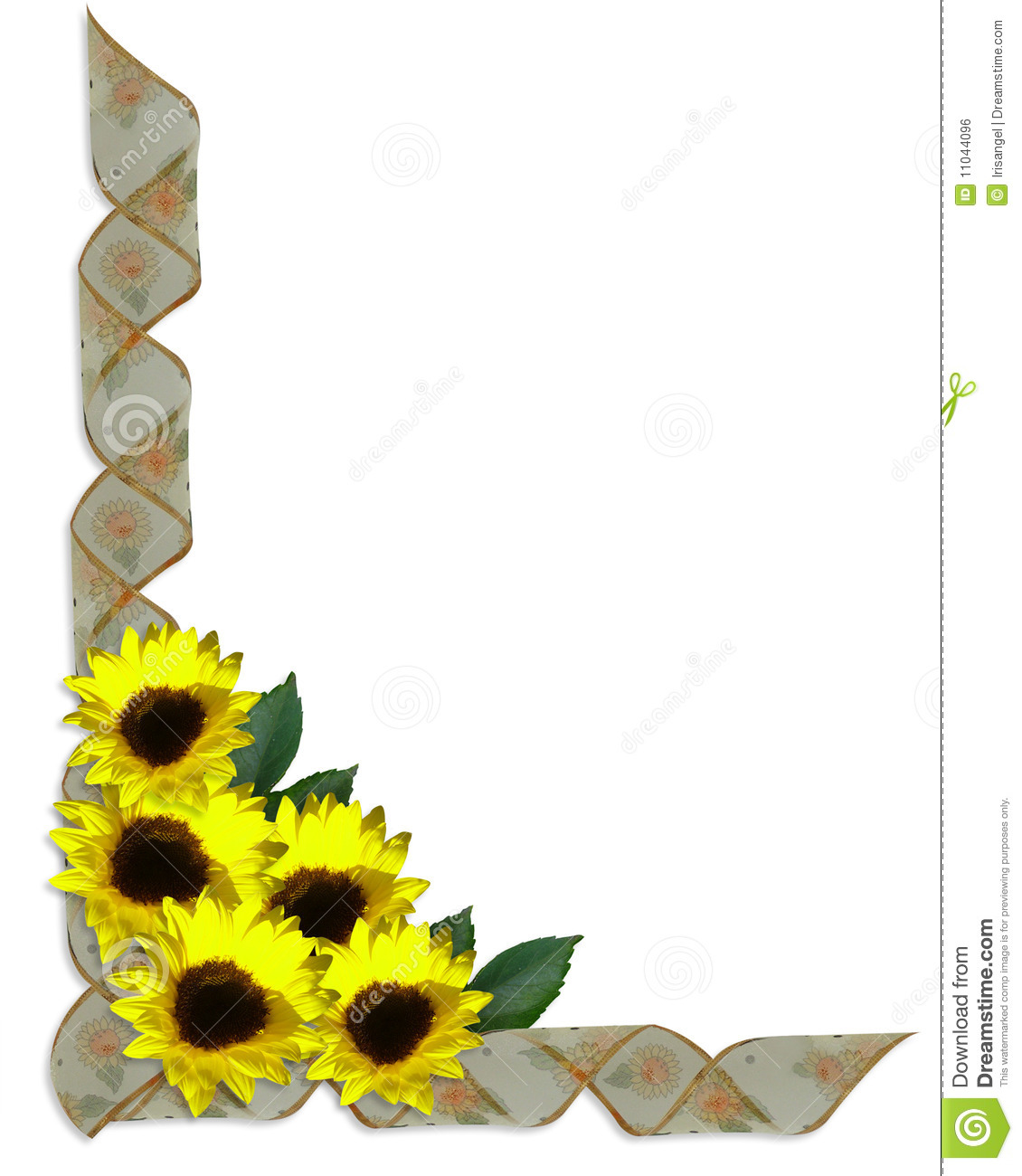 Floral Corner Design Sunflowers Ribbons Royalty Free Stock
