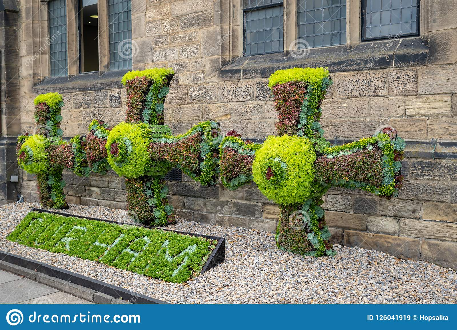 Floral Decoration In The He Center Of Historic Town Durham Uk