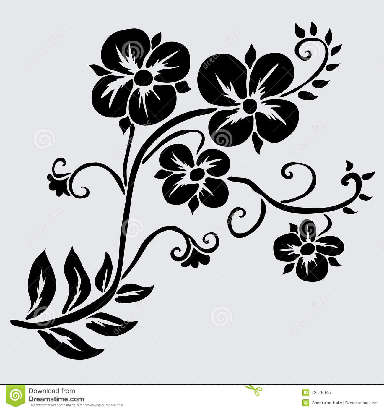 Black And White Floral Decor Poppy Flower Drawing Home  : floral decoration elegant decorative flowers design element branch vintage wedding invitations greeting cards banners 42075045 from www.pidgeonenglish.com size 1300 x 1390 jpeg 135kB