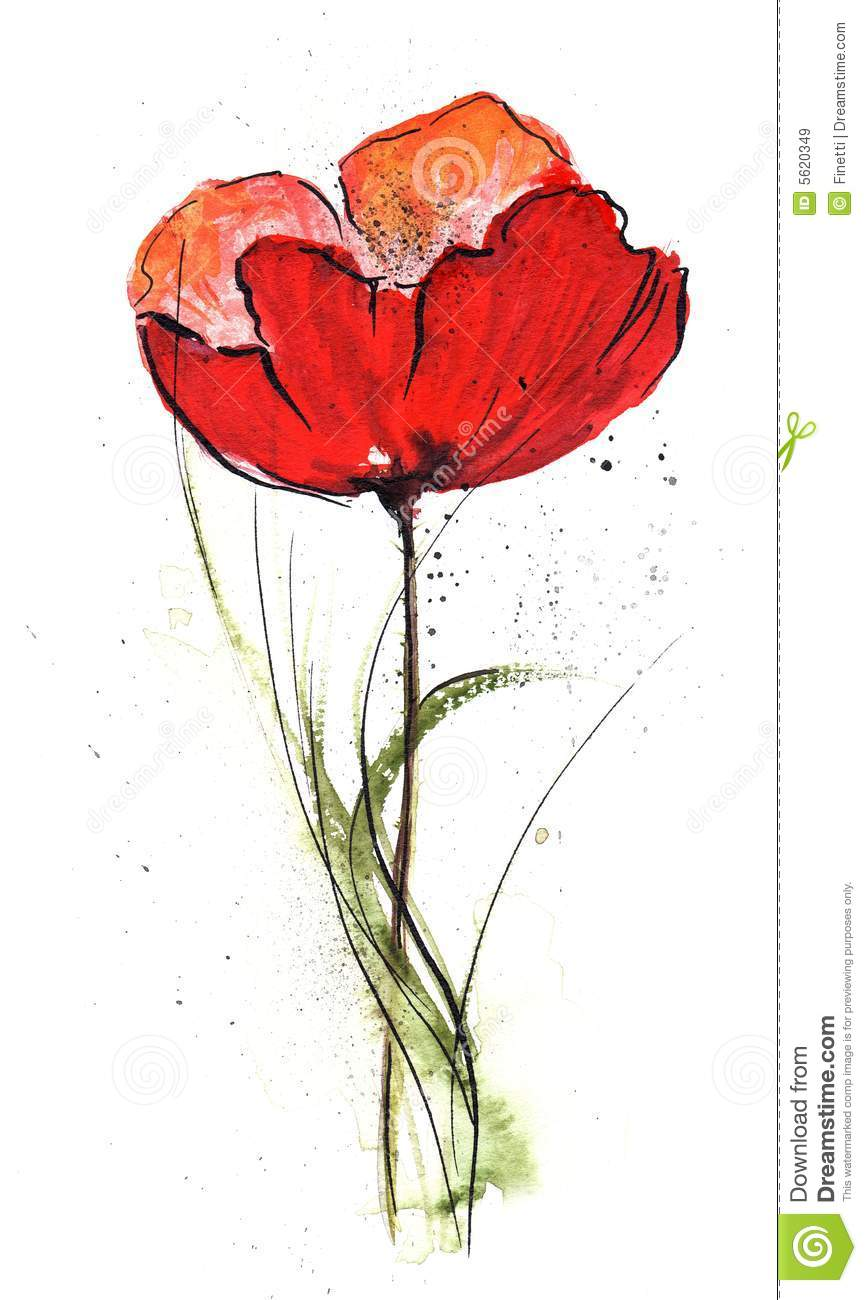 Floral Design with poppy flower