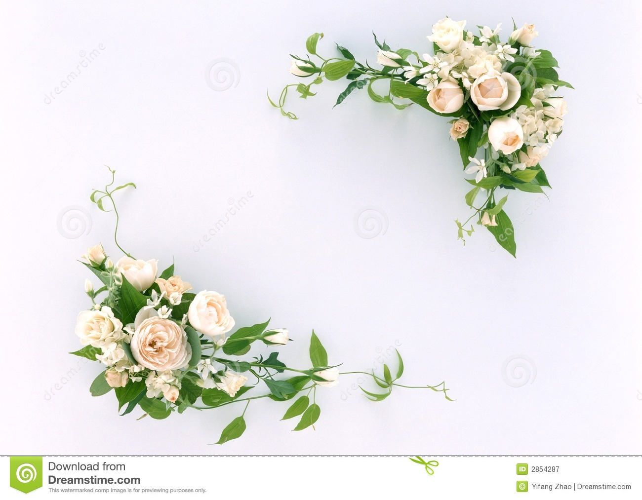 Floral Frame-11 Royalty Free Stock Photography - Image: 2854287
